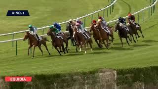 Vidéo de la course PMU PRIX DES GRES