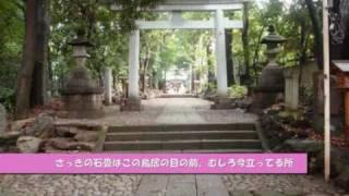 秒速5センチメートル第1話・桜花抄、聖地巡礼【前編】