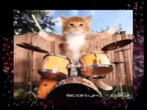 Funny cat sings happy new year!