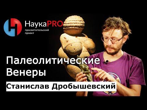 Станислав Дробышевский - Палеолитические Венеры - Смотреть видео без ограничений