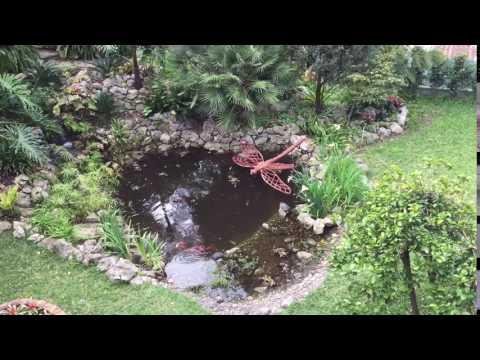 Botanical Garden Gibraltar