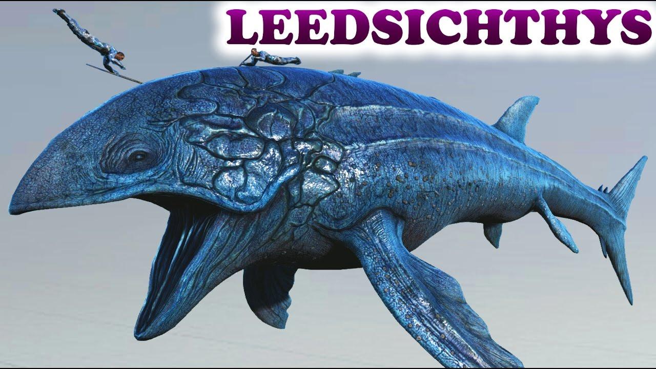 ARK Survival Evolved LEEDSICHTHYS Size comparison, Dossier + Liopleurodon &  Basilosaurus saddles