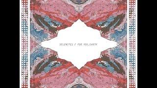 Selenites - Untitled
