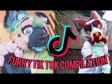 Furry Tik Tok Compilation