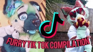 Furry Tik Tok Compilation