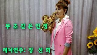 장선희색소폰~부초같은인생(김용임)