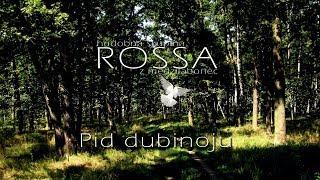 ROSSA 2 - Pid dubinoju