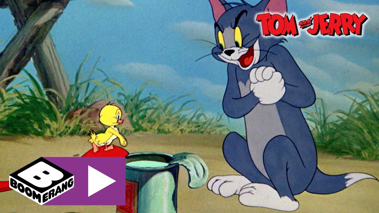 Tom Und Jerry Bilder