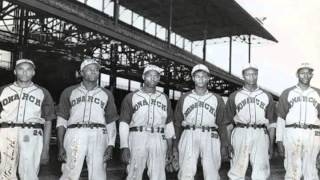 Black Ball   The Players Of The Negro Baseball Leagues