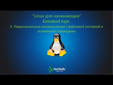 3.Linux для начинающих. Файловая система и основные команды