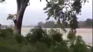 Effects of cyclone Phailin in Balasore 2013