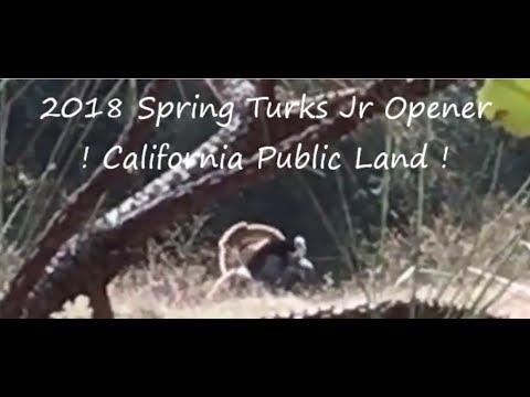 2018 Spring Turkeys!  California Public Land