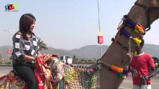 Camel Riding In Jaipur/How To Ride A Camel - Jaipur, India By Rooms And Menus
