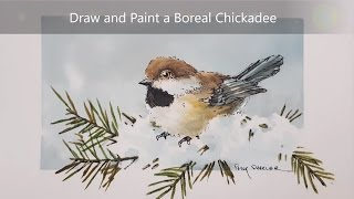 How to draw and paint a Chickadee. Dry brush watercolour and Ink techniques. Peter Sheeler