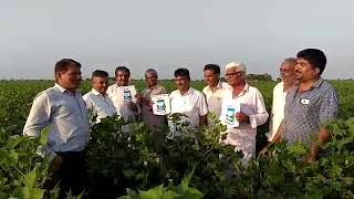 Download Bayer superb cotton reviews#######BAYER CROP SCIENCE LTD.####COTTON@@@@ Mp3 and Videos