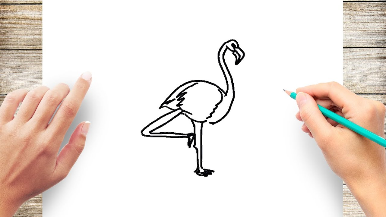 How To Draw Flamingo For Kids Step By Step Easy Youtube