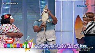 CelebriTV: Boobsie at Donita Nose, ginulantang ng maliit na buwaya