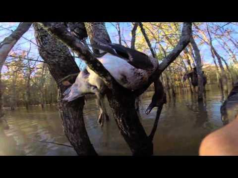 Team Heybo, Opening Day at Whispering Oaks Hunting Lodge