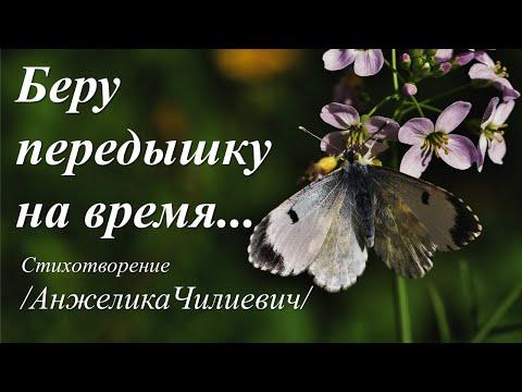 Беру передышку на время.../автор слов Анжелика Чилиевич /