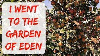GARDEN AND BACKYARD TOUR OF A TYPICAL BULGARIAN BACKYARD - GARDEN OF EDEN