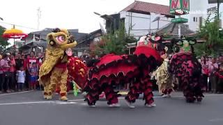 Parade Barongsai & Liong Keliling Kuta Jelang Tahun Baru Imlek 2568