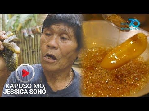 Kapuso Mo, Jessica Soho: Dugo Ng Cobra At Saging, Epektibong Lunas Ba Sa Iba't Ibang Mga Sakit?