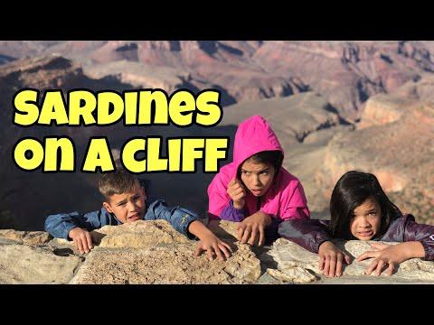 SARDINES ON A CLIFF