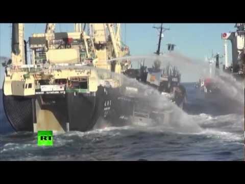 Морской бой в