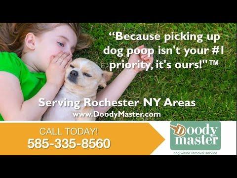 Doody Master Inc. | Dansville NY Pet Waste Cleanup