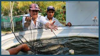 Prototipo sustentable de cultivo de peces nativos para el autoconsumo, Ribera Baja de San Francisco