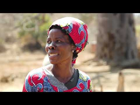 Fighting climate change - Rushinga