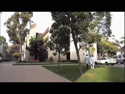 Clearing The Smoke (NL ondertitel/subs - documentaire uit 2011 over cannabis als medicijn)