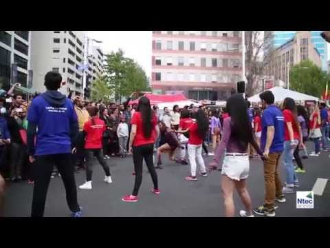 The Ntec Flash Mob - Auckland Diwali Festival 2015