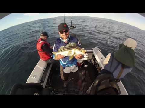 Fishing Tassie's East Coast