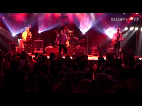 The Monroes - Full Concert