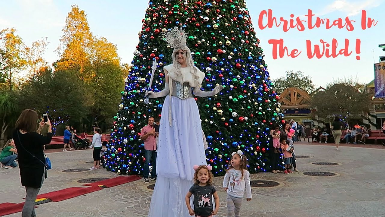 Lowry Park Zoo Christmas.Christmas In The Wild 2017 Tampa S Lowry Park Zoo