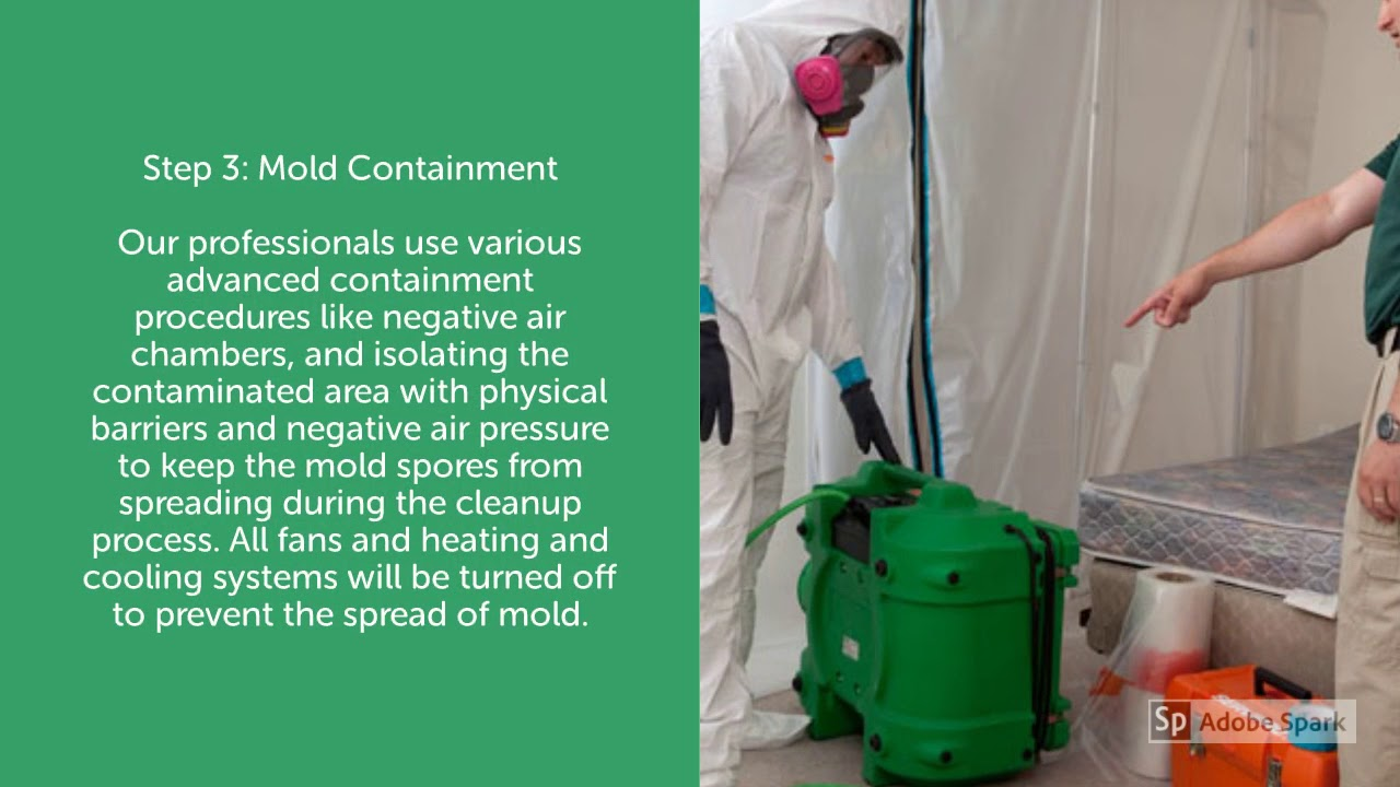 Lovettsville, VA-Mold Removal and Remediation, including