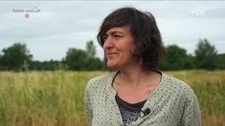 Yvelines | PÉPINIÈRE SCIENTIFIQUE DE MULTIPLICATION DE PLANTES LOCALES