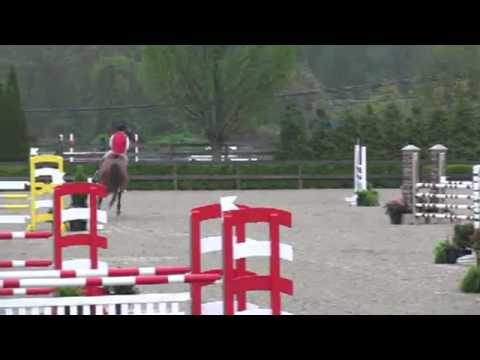 Video of LUDWIG VON BAYERN II ridden by KIANNA LUSCHER from ShowNet!