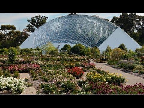 Ryle visits the Adelaide Botanic Gardens in Australia | FULL INSERT