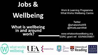 What is wellbeing in work? A presentation by Professor Kevin Daniels