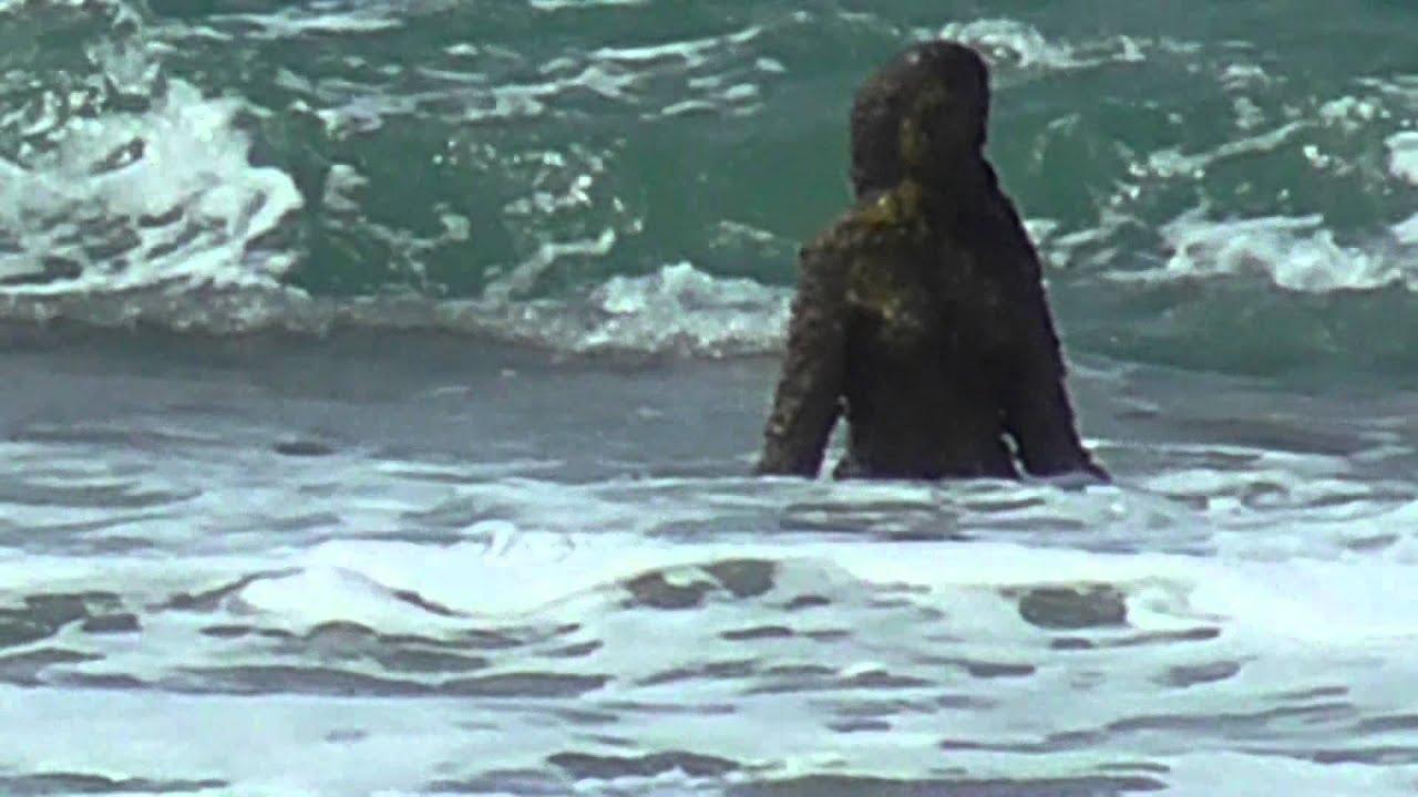 praia de carapibus conde pb brasil youtube