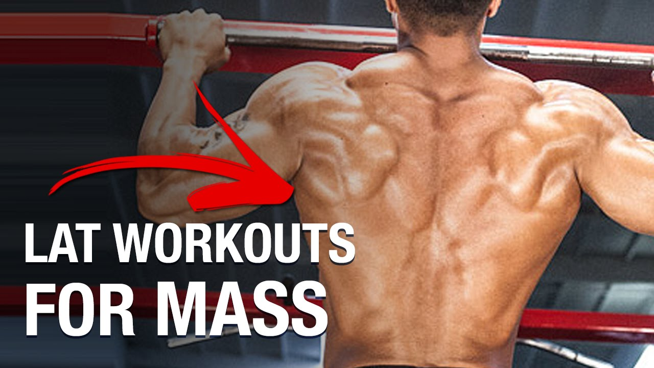 The widest back muscles: the most effective exercises 9