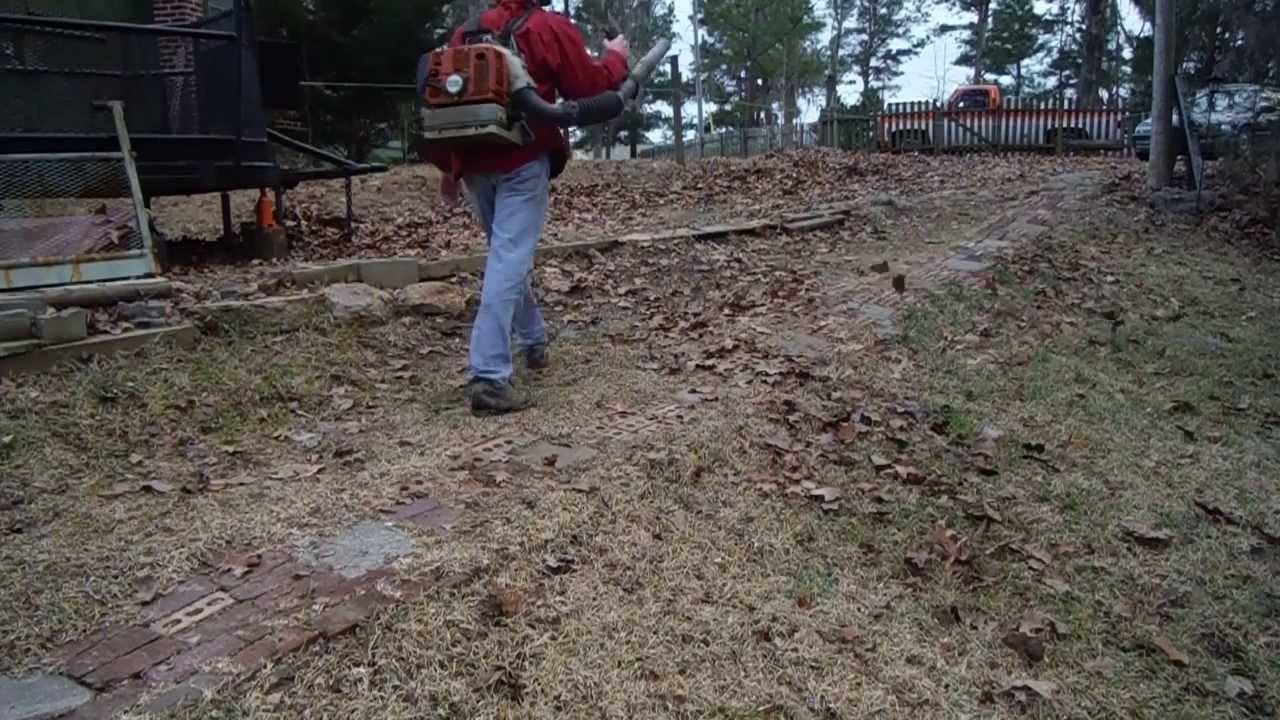 Stihl Br 380 Backpack Er Sunday Craigslist Pt4 Ing Some Leaves