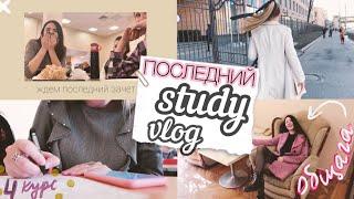 ПОСЛЕДНЯЯ НЕДЕЛЯ В УНИВЕРЕ \\ Study vlog