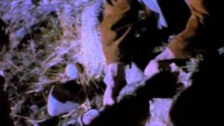 Download a-ha - Crying in the Rain (Official Video)