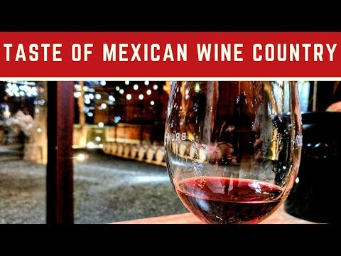 Taste of Mexican Wine Country in Valle de Guadalupe