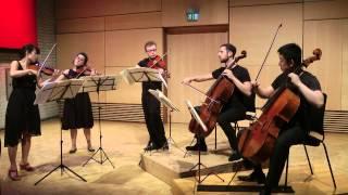Schubert String Quintet in C (D.956) - I. Allegro ma non troppo