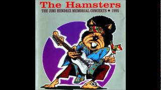 The Hamsters - Love or Confusion
