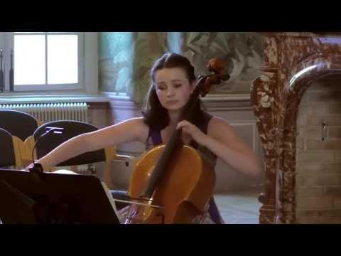 "Sonate a-moll ""Arpeggione"", D821 (Franz Schubert)"